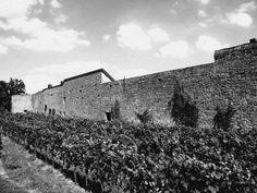 '422 - Stadtmauer Wachenheim an der Weinstrasse 11 ' von Elke Seifried bei…
