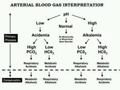 Interpretation of ABG