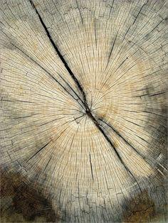 Log stories
