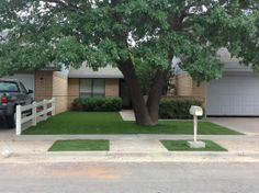 Artificial turf lawns are perfect for yard areas where large trees prevent grass from growing! www.golfgreenstexas.com