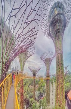 Gardens By The Bay is in Singapore, Singapore. Gardens by the Bay right behind the Marina Bay Sands -the famous hotel with an infinity pool on the top. Modern Pools, Gardens By The Bay, Pool Designs, Backpacker, Southeast Asia, Singapore, Explore, Park, Nature