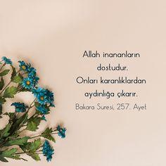 İyi Akşamlar.. 🌹 . #like #çiçek #flowers #goodnight #iyiakşamlar Islamic Messages, Islamic Quotes, Allah Islam, Quotes About God, Meaningful Words, Quran, How To Make Money, Prayers, Religion