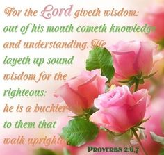 PROVERBS 2:6-7   6 For the Lord gives wisdom;     from his mouth come knowledge and understanding; 7 he stores up sound wisdom for the upright;     he is a shield to those who walk in integrity,