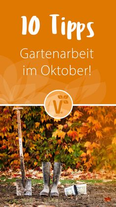 Gartenarbeit im Oktober - New Ideas
