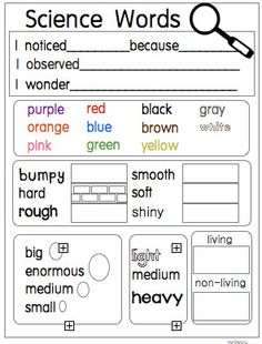 Science Word Cards