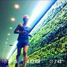 King! Barry is running . Photo credit:  @running.shots #barryisrunning  #run #runsg #nikeplus #nikerun #runhappy #sgrunners #runnerscommunity #runnerinspiration #runforabettertomorrow #Corrida #instarunner #iphonerunner #iphoneonly  #wearetherunners  #loverunning  #RunItFast #justrunlah #runselfie  #justrunlah #bintangrajarun #bintangraja