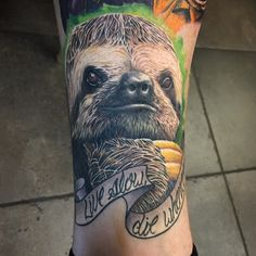 Here's a healed shot of the sloth I did on a fine fellow who is amassing quite a collection of work @nomadterp done at @immortal_images_tattoo_studio with @allaprimaink and @fkirons #arcaneink#spektraedgex#slothtattoo#realisticanimaltattoos#inkedmag#tattoodo#tattoosnob#tattooistartmag#tattoo#nctattooers#charlottetattooers#charlotte#animaltattoo#slothtattoo#colorrealism#liveslowdiewhenever#immortalimages#704