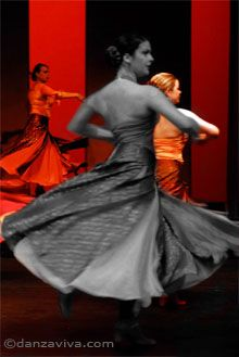 Danza Viva Spanish Dance