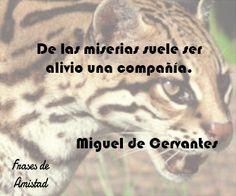 Frases de amor de cervantes de Miguel de Cervantes