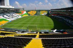 leon estadio nou camp general (2)