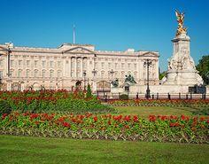 Buckingam Palace gardens......