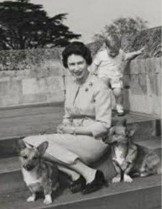 Margaret Rose, Prince Andrew, English Royalty, British Royals, Queen Elizabeth, Love Her, Corgi, Couple Photos, Couple Shots