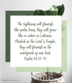 The righteous will flourish like palm trees; they will grow like a cedar in Lebanon. Planted in the Lord's Temple, they will flourish in the courtyard of our God. (Psalm 92:12-13)
