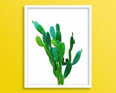 Cactus Photo Cactus Artwork Cactus Printable Opuntia by Blckd