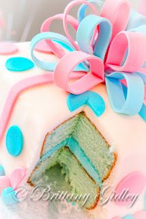 Baby Gender Reveal  Brittany Gidley Photography  Cleveland, OH