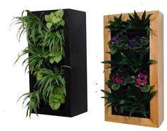 st.houzz.com - modern indoor pots and plants
