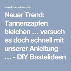 Neuer Trend: Tannenzapfen bleichen … versuch es doch schnell mit unserer Anleitung … - DIY Bastelideen