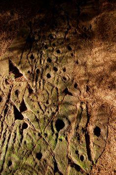 Dalriada Project Archaeology