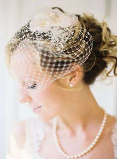 Birdcage veil and high updo