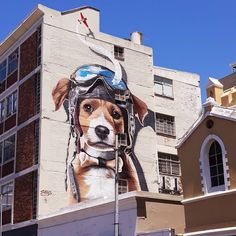 📷 @iamjanrat ・・・ . . . #ctgraffiti #streetart #aviatordog #capetownstreets #capetown #capetownproperty #streetstyle #streetsofct #streetsofcapetown #caperealest