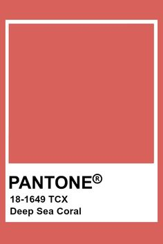 Pantone Red, Pantone Swatches, Color Swatches, Pantone Color Chart, Pantone Colour Palettes, Pantone Colours, Material Board, Color Shapes, Colour Board