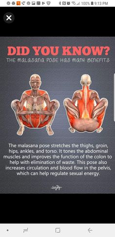 Malasana Pose, Benefits Of Stretching, Abdominal Muscles, Healthy Tips, Good To Know, Workouts, Exercise, Fitness, Yoga