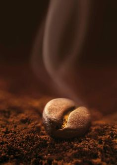 The aroma of a coffee bean