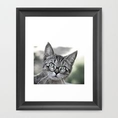 Old Lady Cat with Glasses Framed Art Print
