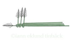 Leva grönt: Gräskrona arbetsbeskrivning