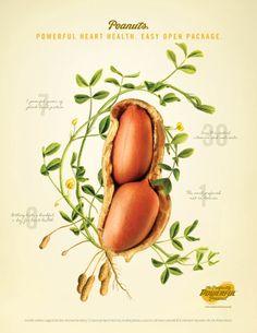 National Peanut Board 2014 Print Ad The Perfectly Powerful Peanut