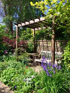 8 effective tips for narrow town garden success - The Middle-Sized Garden | Gardening Blog