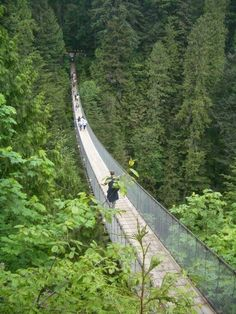 Vancouver, Canada » This looks fun and scary!