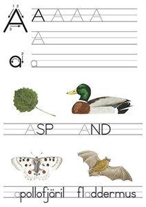 Mitt första natur ABC - Träna alfabetets bokstäver, läsa och skriva med hjälp av fina djurbilder.