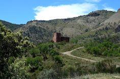 Senderismo Valle de Lecrín, al sur de Granada. La Torre de la Cebada se encuentra en el antiguo camino real que va desde el Valle de Lecrín hasta la costa, pasando por Pinos del Valle y los Guajares. La carretera es de montaña y es un paseo muy agradable en coche.  La antigua y ahora ruinosa, Venta de la Cebada esta situada en el punto mas alto de este recorrido y en frente esta el camino forestal que baja hasta Izbor - una caminata larga y empinada. Sin embargo, uno se puede gozar mucho de…