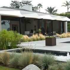 low maintenance garden soften concrete edges