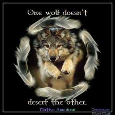 One Wolf Doesn't Desert the Other--Native American Proverb--Wolf Angels Shared Lone Wolf Photo