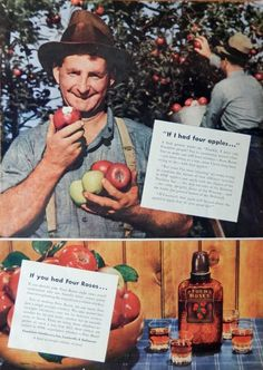 Four Roses Whiskey  30 s Vintage Print Ad  Color Illustration   if I had four apples  Magazine Art