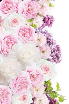 Find images and videos about pink, flowers and wallpaper on We Heart It - the app to get lost in what you love. Mermaid Wallpaper Backgrounds, Easter Wallpaper, Flower Background Wallpaper, Flower Backgrounds, Of Wallpaper, Flower Power, My Flower, Beautiful Roses, Beautiful Flowers