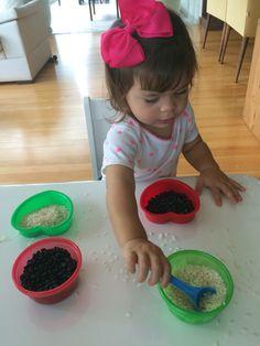 Transferencia de grãos para o potinho da mesma cor. Atividade montessoriana.