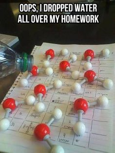 I couldn't hand in my assignment... I accidentally spilt water all over it!