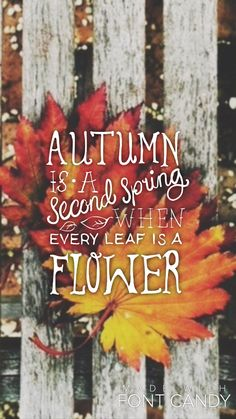 #autumn #fall #wallpaper #lockscreen created with FontCandy
