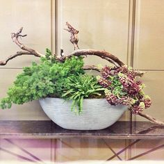 Hazelton Hotel Lobby large arrangement by McEwan Floral using ferns, fritillary persica and grapevine wood