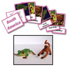 Geography Replica Activity Set for South America