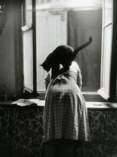 À la fenêtre (from Les chats de Willy Ronis, Paris, 1954).