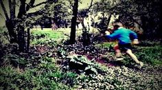 Correre nei boschi