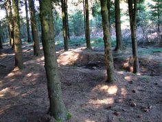 Band of Brothers: Foxholes in the Bois Jacques (UPDATED) | Flickr - Photo Sharing!