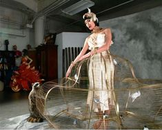 Caged Dresses - This Birdcage Dress is a Fully Functional Wearable Brass Bird Cage - and I thought petticoats were bad!