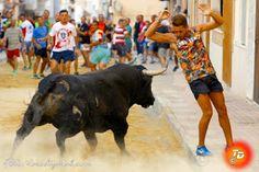 torodigital: Buenas sensaciones transmitió el toro de Prieto d...