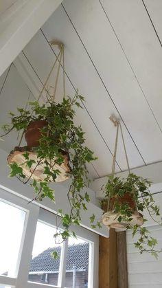 Plantenhangers berkenhout doorsnee 30 cm hangt aan jute touw # plantenhangers #wood #hobby #Boom