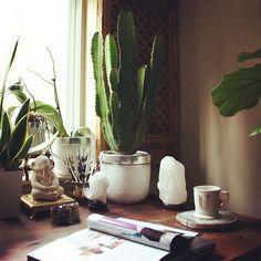 homeoffice, cactus, healingcrystals - apartmentf15